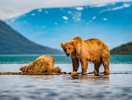 נוף באלסקה